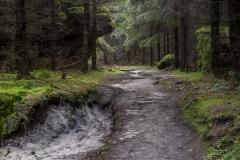 Sächsische Schweiz-17