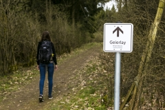 Geierlay Hängeseilbrücke 2018