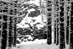 Harz, Winter, Brocke, Brockenbahn, Wernigerode, Schnee, Landschaft, Berg, Aufstieg, Aussicht,