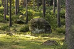 Sächsische Schweiz-13